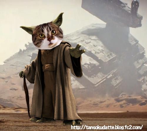MP-Yoda.jpg
