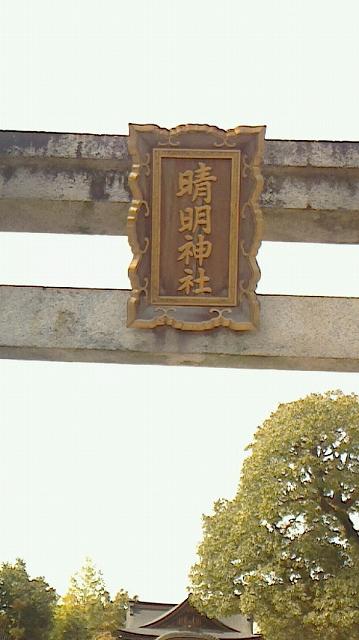 16)せいめいさんとこ-3