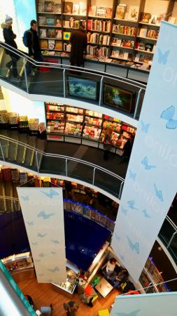 大きな本屋さん