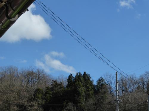 今日の空 風はビュービュー吹き荒れています。