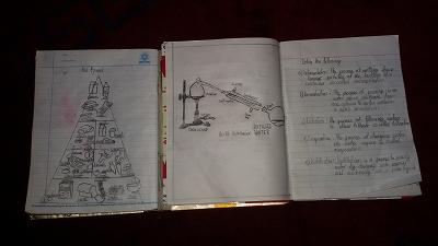 タチェンのノート