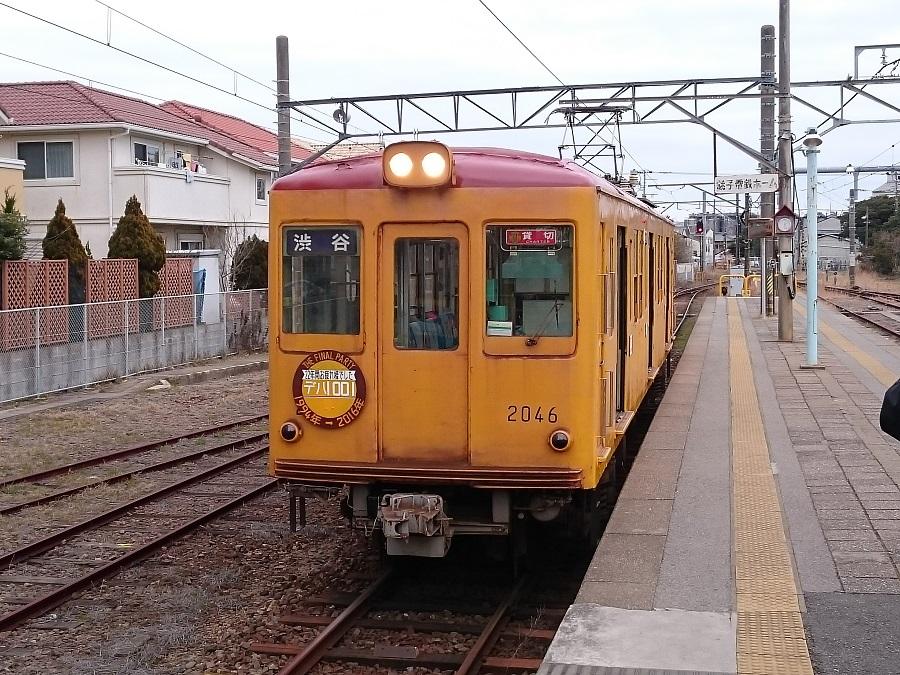 2016年団体貸切列車写真(3)