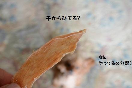 DSC_2072.jpg