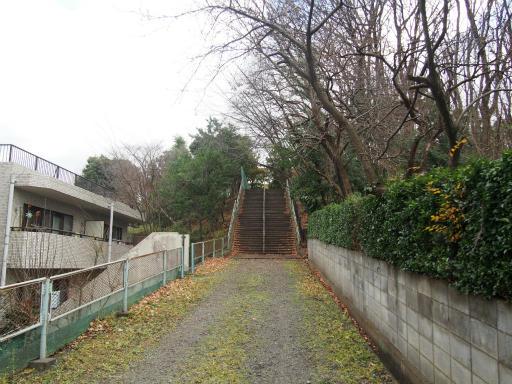 20151227・狭山湖散歩1-06