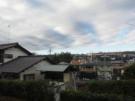 20151227・狭山湖散歩1-05