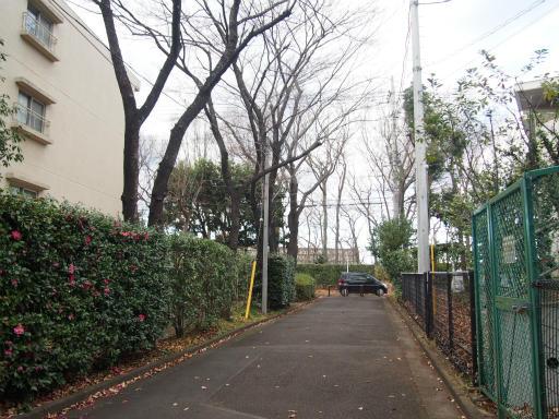 20151227・狭山湖散歩1-09