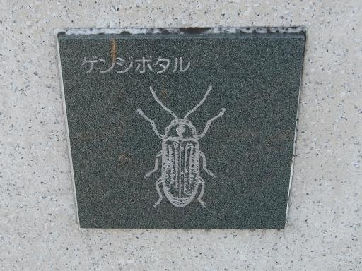20151227・狭山湖散歩2-04・中
