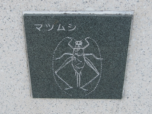 20151227・狭山湖散歩2-11・中