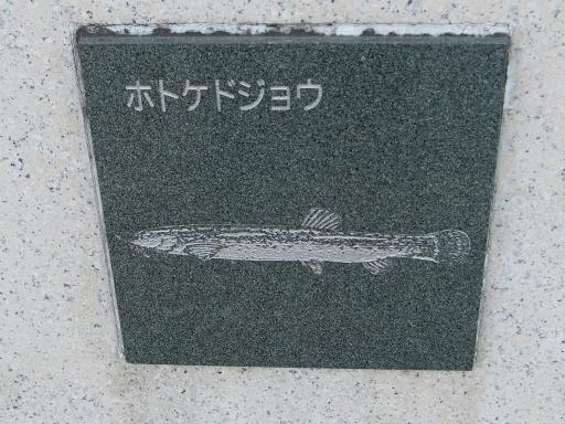 20151227・狭山湖散歩2-10・中