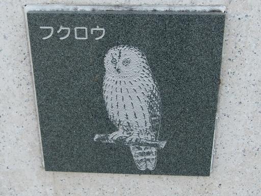 20151227・狭山湖散歩2-09・中