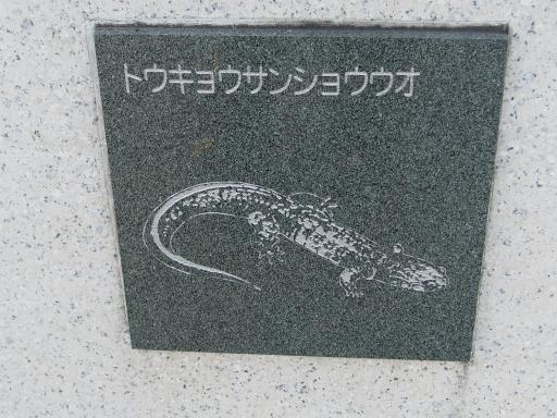20151227・狭山湖散歩2-07・中