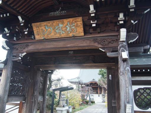 20151227・狭山湖散歩2-18