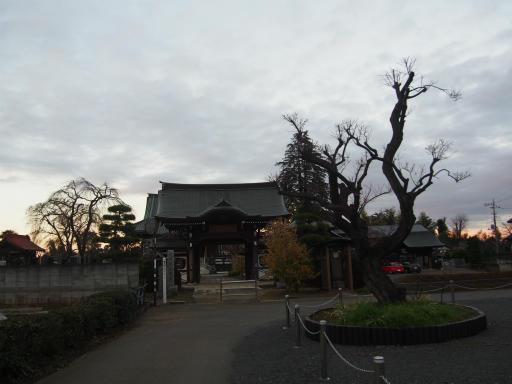 20151227・狭山湖散歩2-16・全徳寺