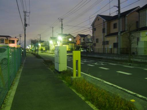 20151227・狭山湖散歩2-24