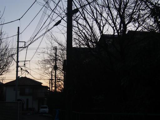 20160205・散歩01