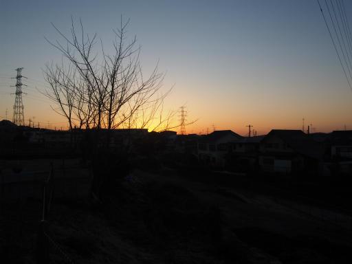 20160205・散歩11