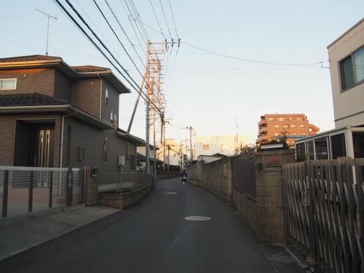 20160205・散歩18