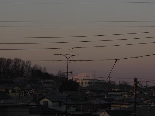 20160205・散歩14