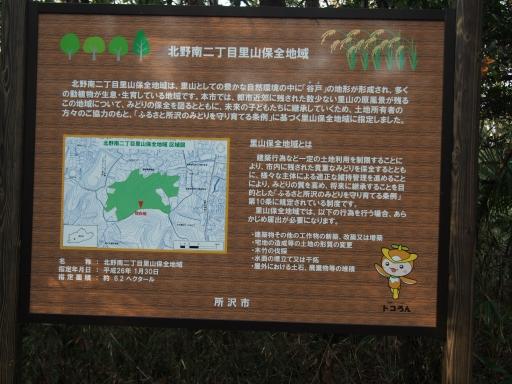 20160214・春の狭山湖1-06・中
