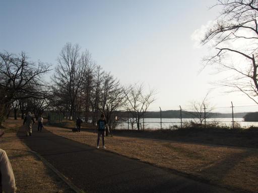 20160214・春の狭山湖1-11