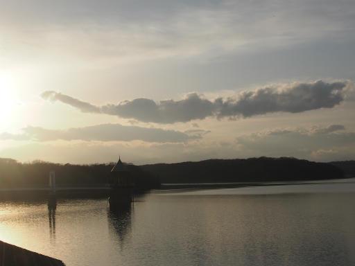 20160214・春の狭山湖2-10