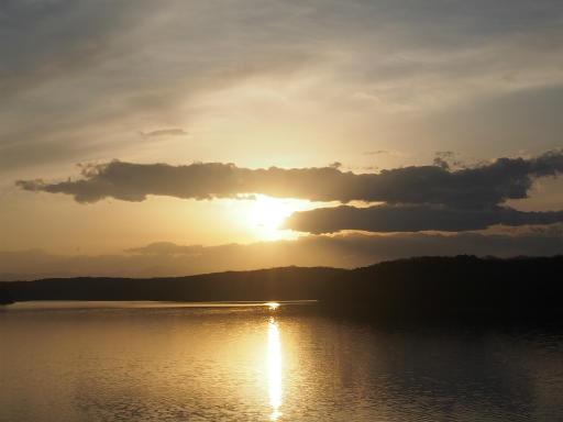 20160214・春の狭山湖2-17
