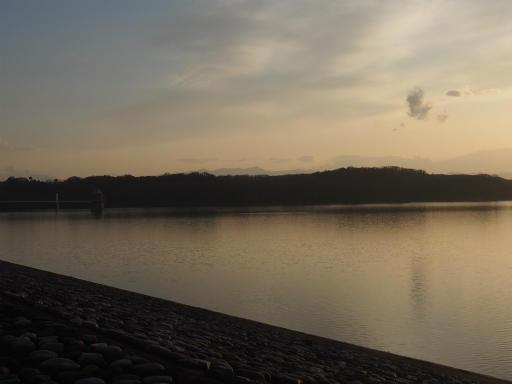 20160214・春の狭山湖2-15