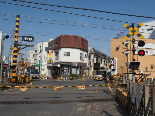 20160227・越生梅見2-09