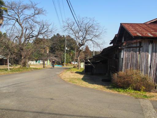 20160227・越生梅見・空03