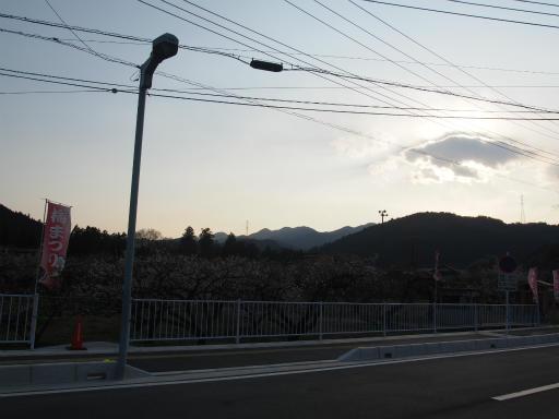 20160227・越生梅見・空17