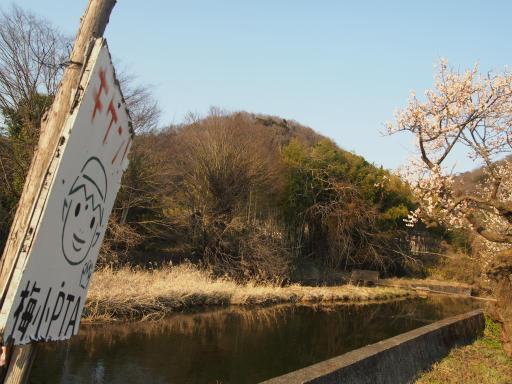 20160227・越生梅見・空14・越辺川