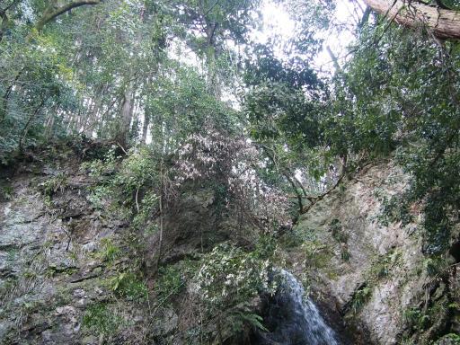 20160227・越生梅見・空19・黒山三滝、男滝