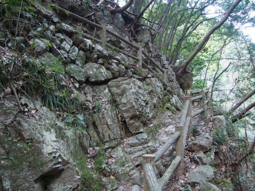 20160305・越生梅見9-25・黒山三滝
