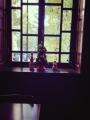 三菱のカフェの窓