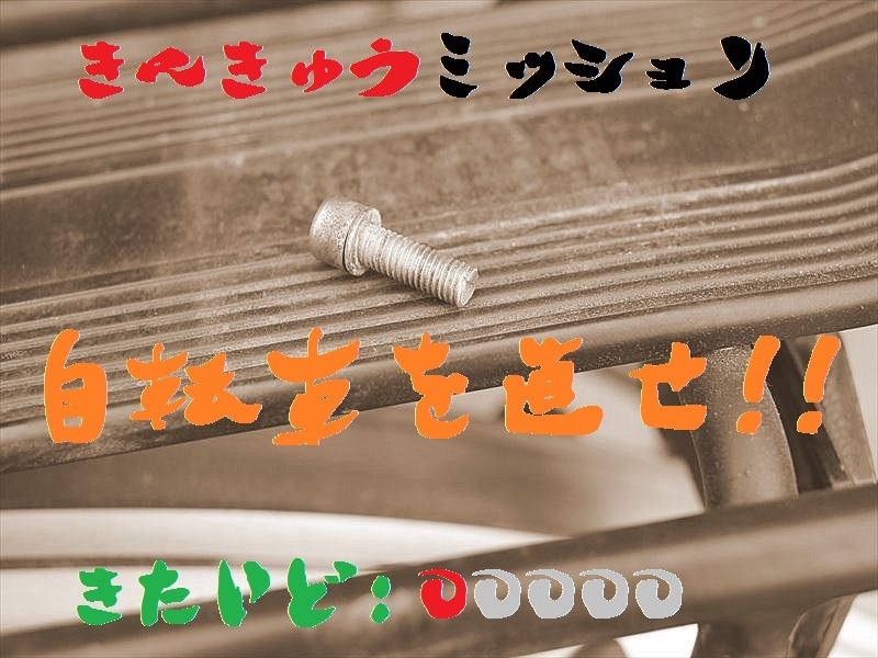 IMG_1151_20151206_001.jpg