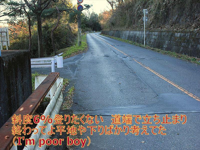 IMG_2875_20151227.jpg