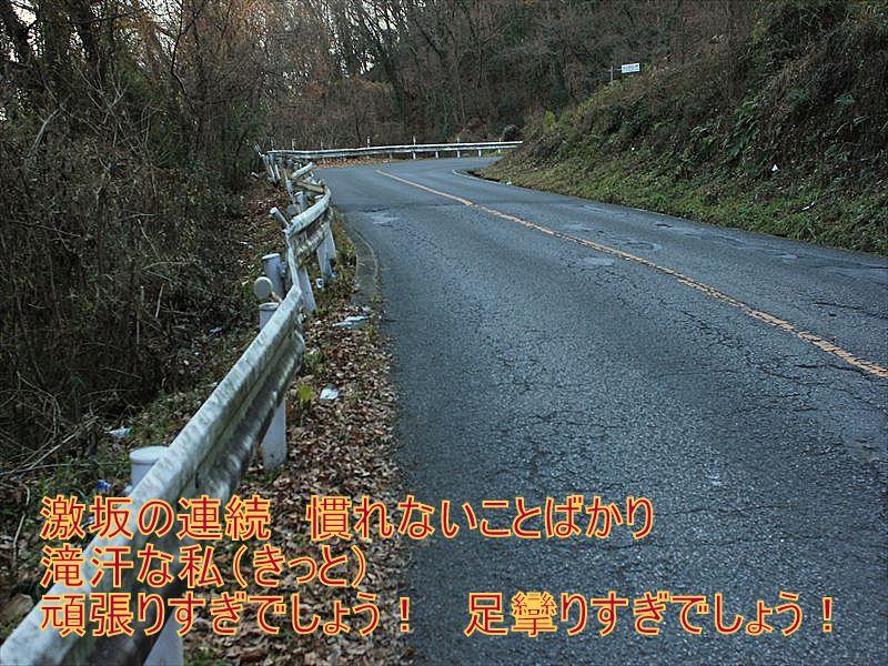IMG_2878_20151227.jpg