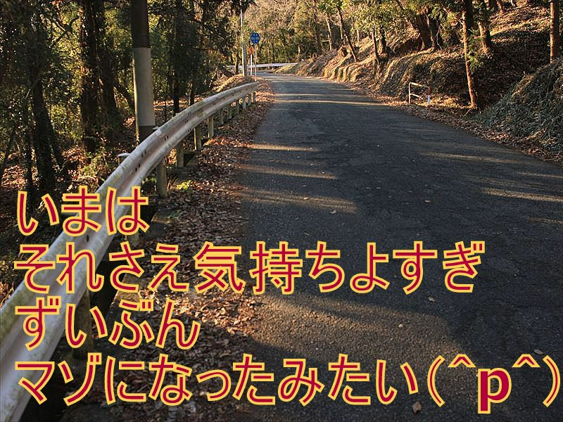 IMG_2879_20151227.jpg