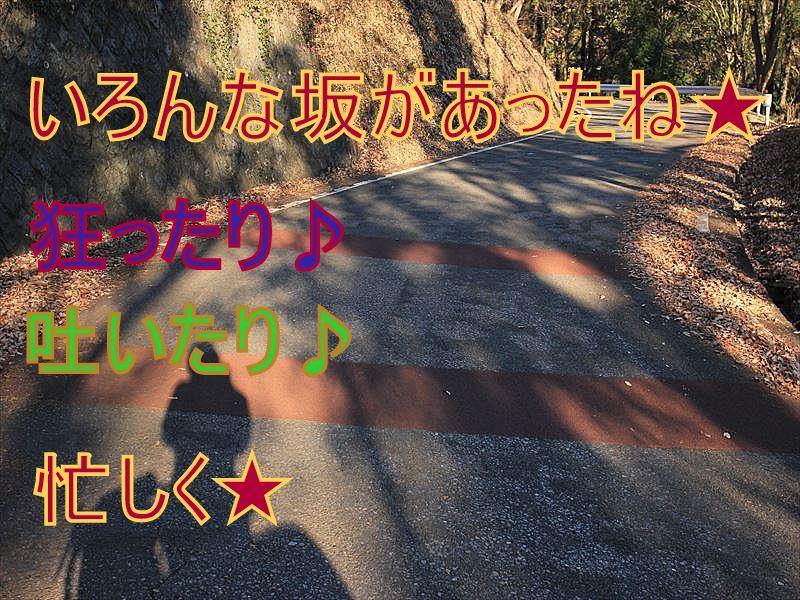 IMG_2881_20151227.jpg