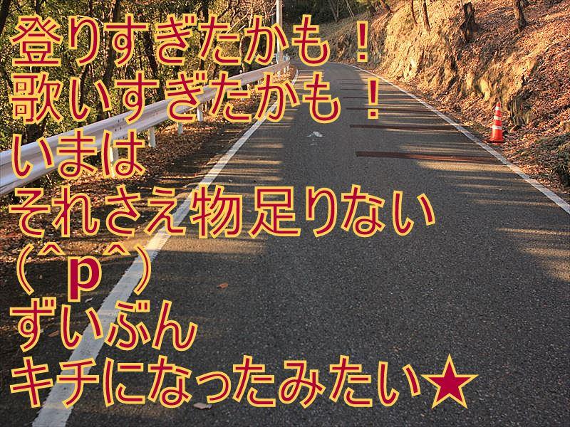 IMG_2885_20151227.jpg