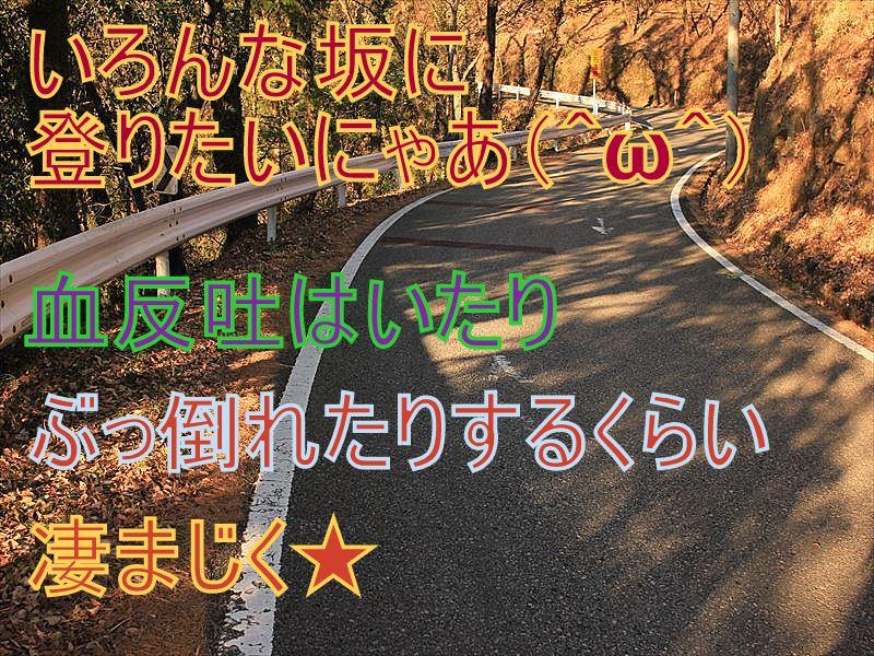 IMG_2886_20151227.jpg