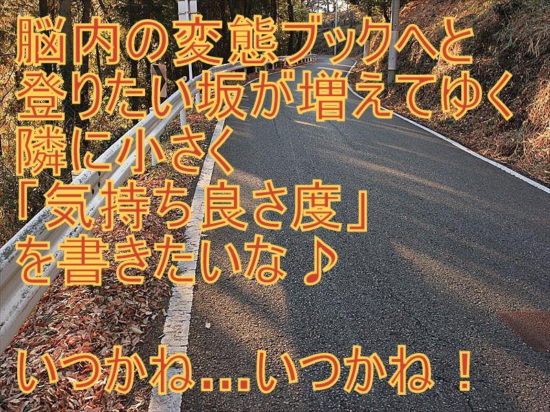 IMG_2887_20151227.jpg