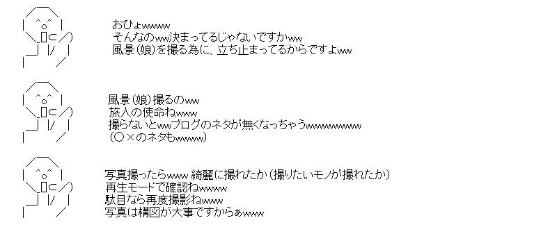 aa_sum2_02.jpg