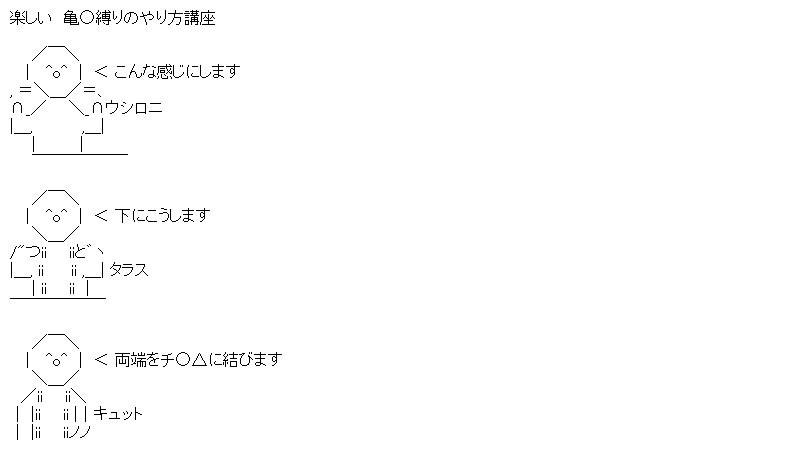 aa_sum7_01.jpg