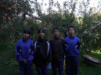 中学農業体験