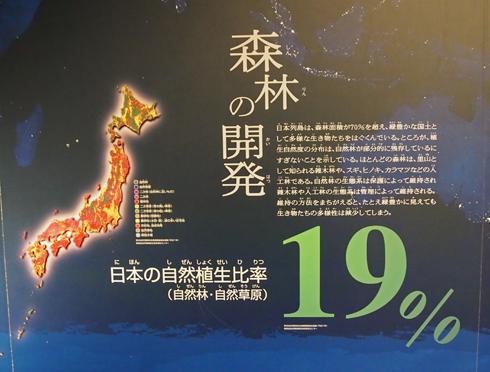 科博2015常設展(1)-2