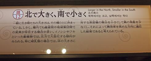 科博2015常設展(1)-13