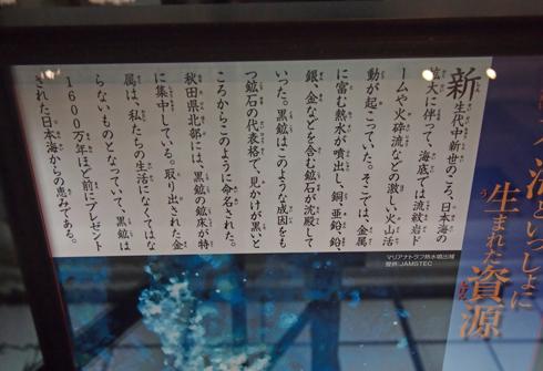 科博2015櫻井鉱物コレクション-1