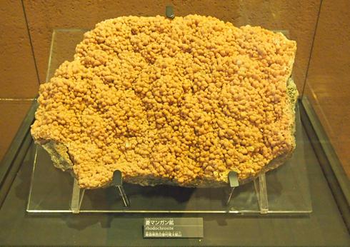 科博2015櫻井鉱物コレクション-3