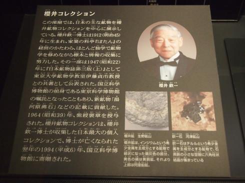 科博2015櫻井鉱物コレクション-8